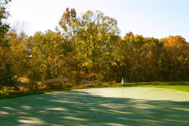 Golf green surrounded by mature trees